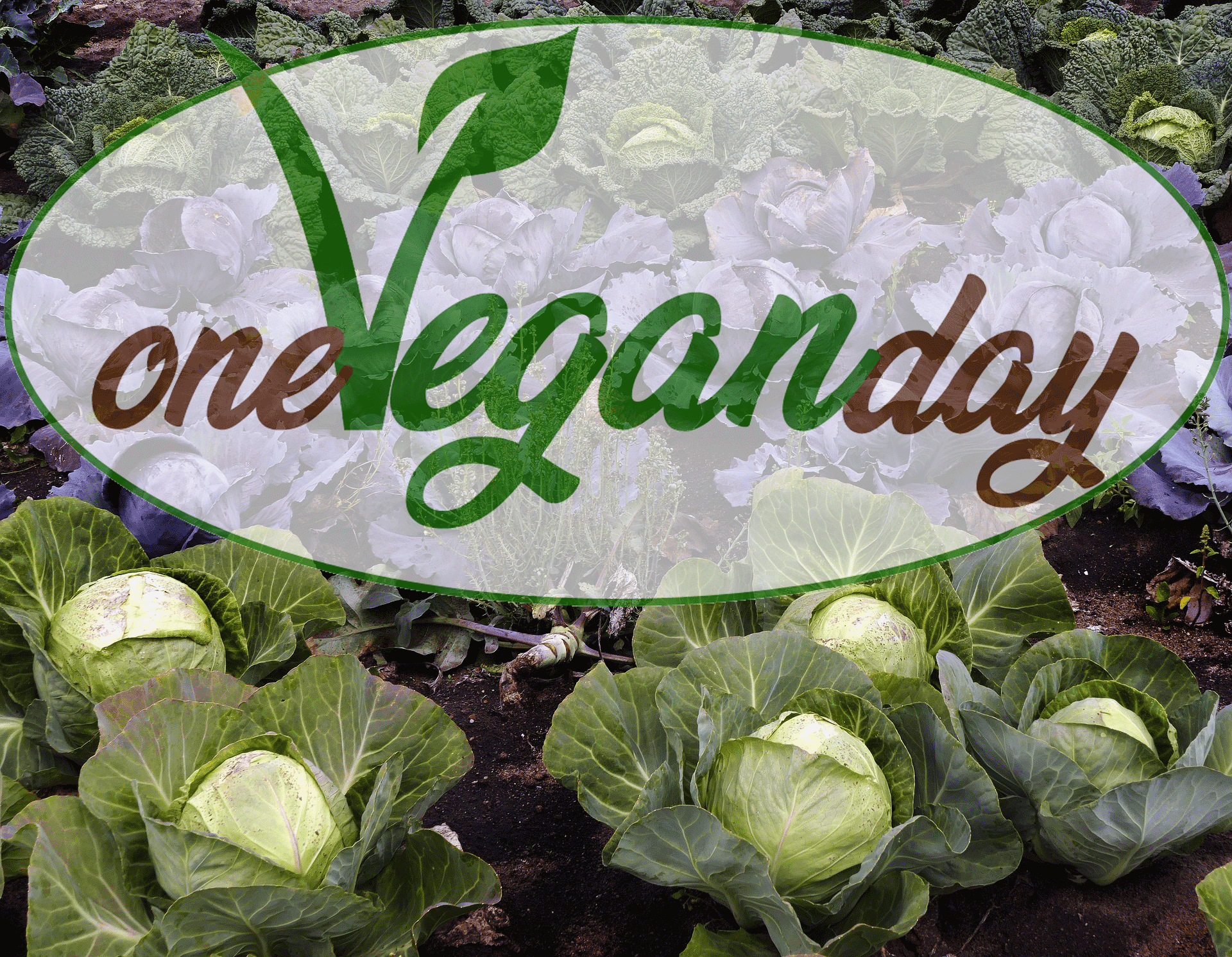Join Me for One Vegan Day – October 19th, 2018